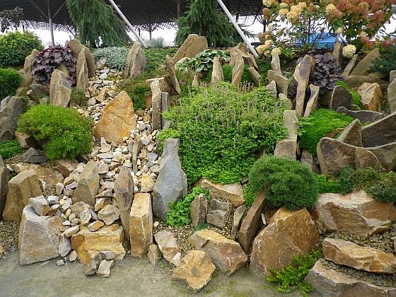 Zazimování zahrady musíme stihnout včas, nezapomeneme ani na skalku (Zdroj: Ludmila Dušková)