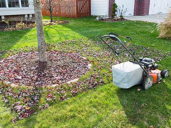 Úklid listí na zahradě je pomocí sekačky rychlý a efektivní (Zdroj: Depositphotos (https://cz.depositphotos.com))