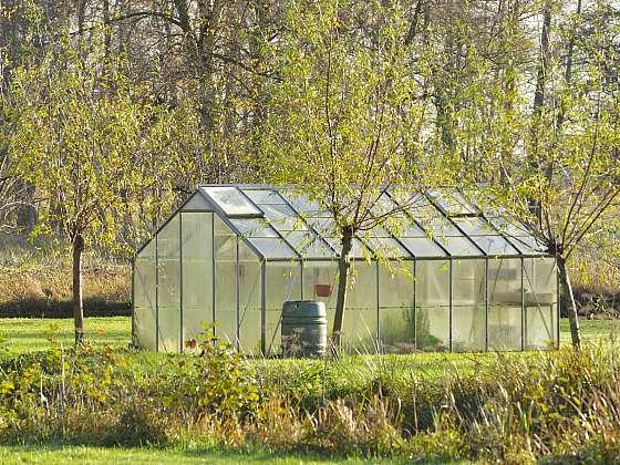 I když máte na podzim na zahradě spoustu práce, vyčištění skleníku byste neměli opomíjet(Zdroj: Depositphotos (https://cz.depositphotos.com))