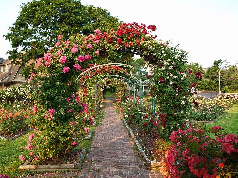 Okrasná zahrada klade důraz na množství kvetoucích rostlin