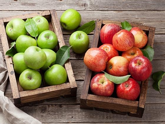 Který sortiment jabloní je stále oblíbený a vyplatí se takové jabloně vysadit? (Zdroj: Depositphotos)