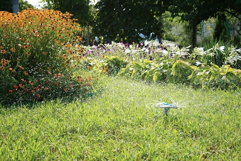 Automatická závlaha prospívá nejen trávníku, ale i záhonovým rostlinám či keřům