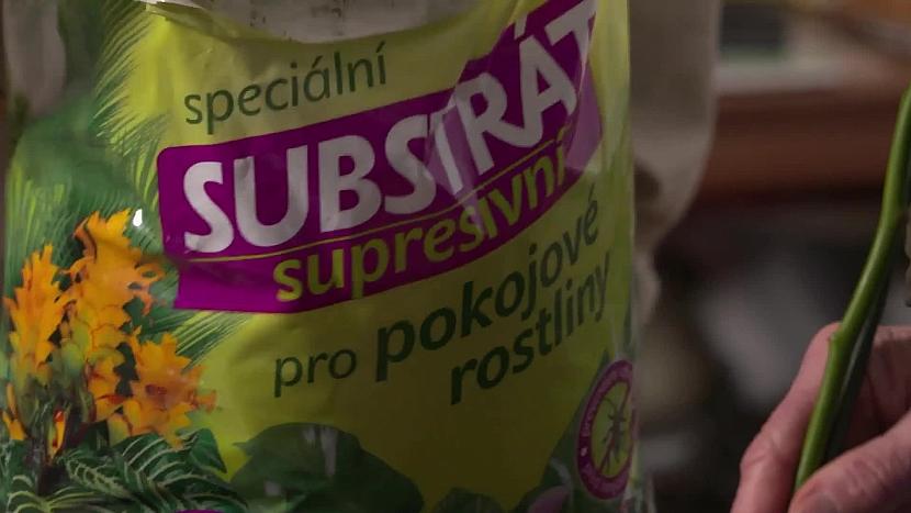 supresivní substrát