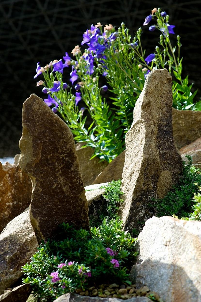 Pokud se rozhodnete do skalky zakomponovat kameny na výšku, dbejte na to, aby byly pořádně ukotvené.