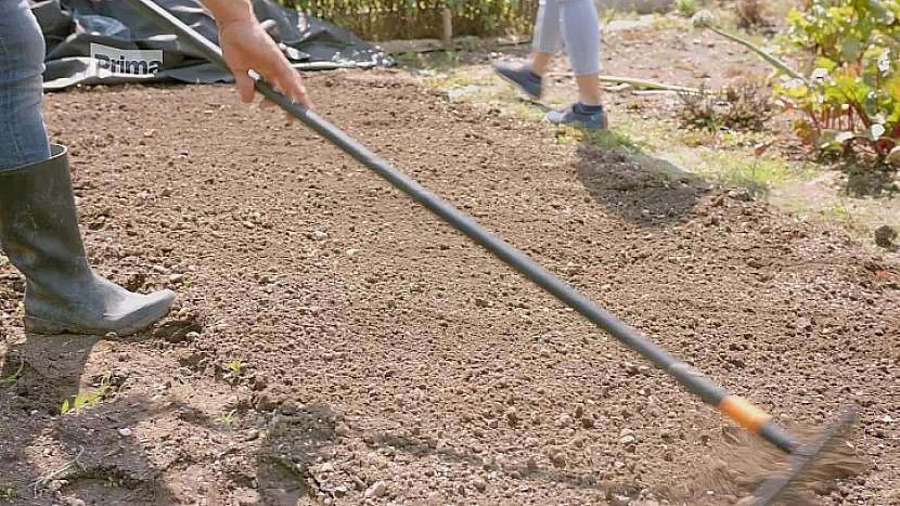 Pozemek posypte hnojivem a hráběmi zahrňte