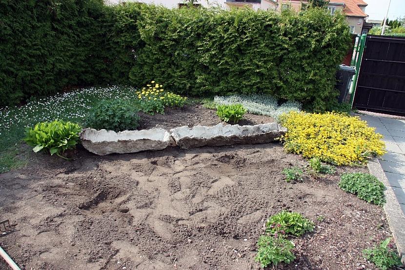 Betonové koryto na květiny: koryto osaďte květinami