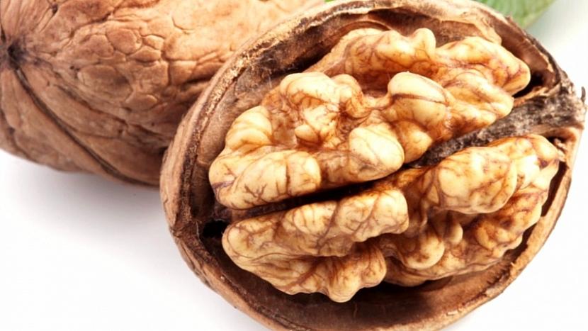 Skrytá řeč rostlin: vlašský ořech nápadně připomíná lidský mozek