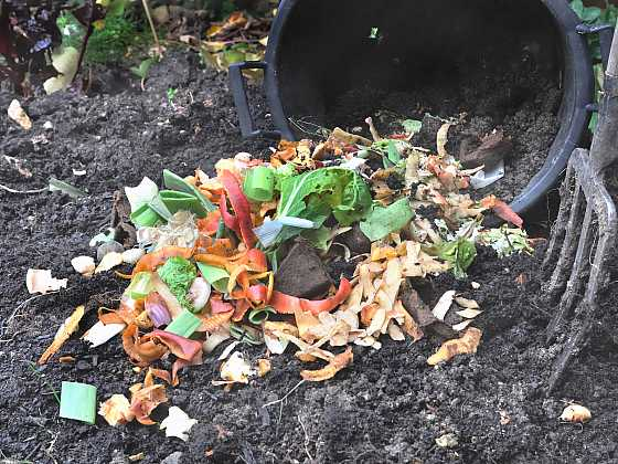 Pro správné pěstování potřebujeme, aby půda obsahovala dostatek živin (Zdroj: Depositphotos)