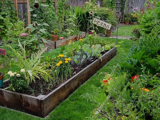 Zdravá půda, zdravá zahrada