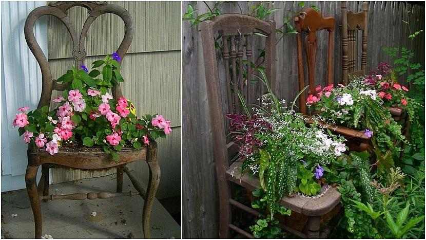 Dřevěné kuchyňské židle