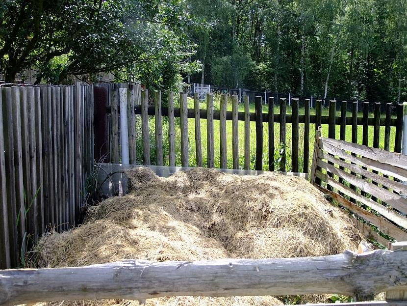 Přebytky trávy využijte k mulčování