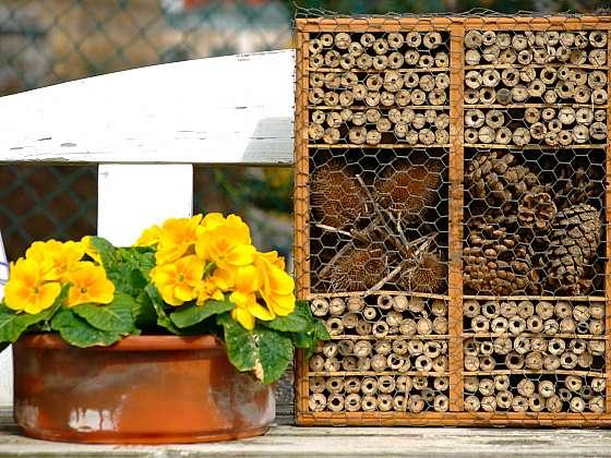 Hmyzí hotel můžete naplnit i šiškami a suchými květy (Zdroj: Depositphotos)