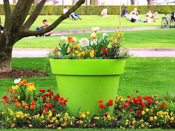 Chcete mít krásnou zahradu po celý rok tak, aby hrála všemi barvami? (Zdroj: Depositphotos)
