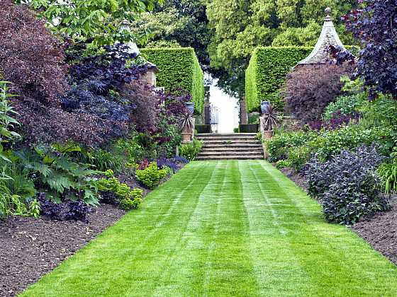Rostliny ozdobné listem dodají zahradě eleganci (Zdroj: Depositphotos)