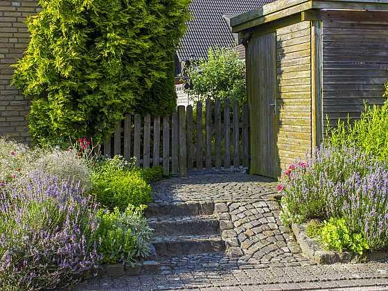 Jaro je vhodnou dobou pro nový bylinkový záhon (Zdroj: Depositphotos)
