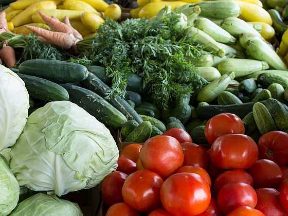 Se vzrůstajícími cenami zeleniny a ovoce určitě oceníte kousek vlastního políčka, kde můžete pěstovat své bio plodiny (Zdroj: Aspen.pr)