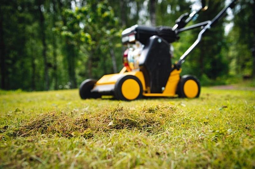 Jak často provzdušňovat trávník?