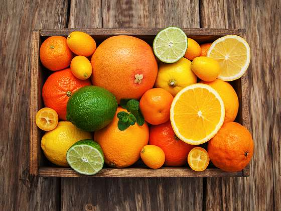 Variabilita citrusových plodů je velká, vypěstujte si své oblíbené (Zdroj: Depositphotos (https://cz.depositphotos.com))