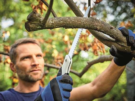 Pro řez dřevin je důležité volit vhodné nástroje (Zdroj: HORNBACH BAUMARKT CS spol. s.r.o.)