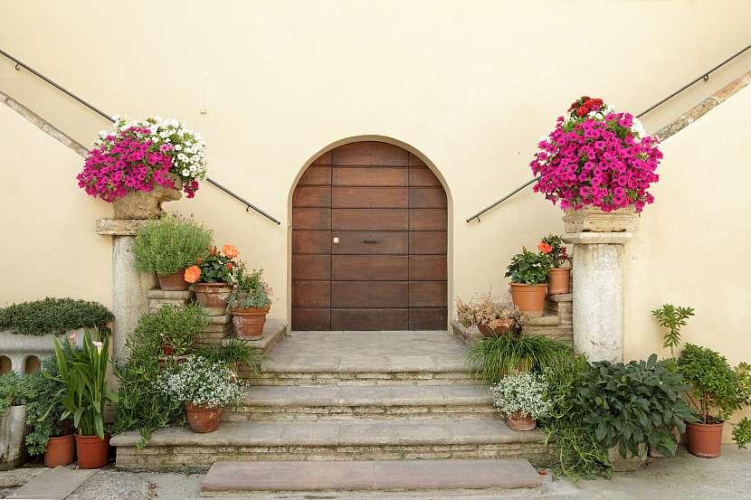 Schody, nádobové rostliny