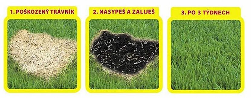 Jak při opravě trávníku postupovat?