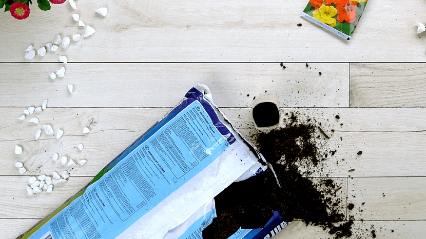 Jak zasít semínka: roličky od toaletního papíru se po vysazení na záhon vpůdě rozmočí a časem i rozpadne.