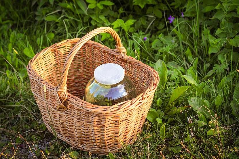 Košík s prázdnou velkou sklenicí od zavařeniny položený v trávě