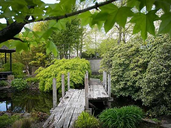 Ze silných prken a trámů byla vytvořena skutečně nádherná lávka přes zahradní jezírko (Zdroj: Daniela Dušková)