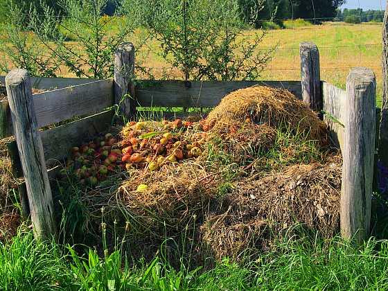 Kompostováním zužitkujete téměř veškerý odpad ze zahrady i bioodpad kuchyně (Zdroj: Depositphotos)