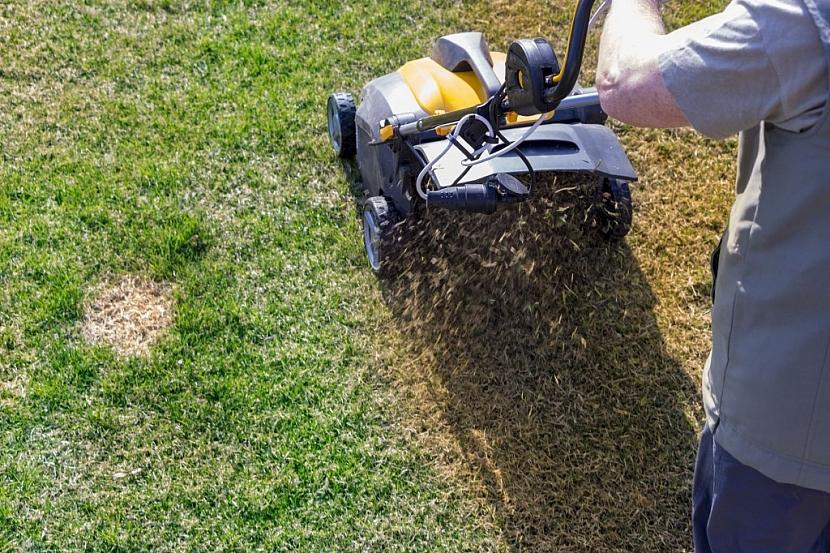 Po vertikutaci může na první pohled trávník vypadat nevzhledně. Během pár týdnů se však dostane do bezvadné formy a výsledkem bude hustý a zelený travní porost