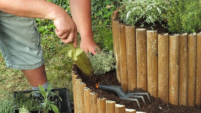 Bylinkový šnek: nakonec zasadíme byliny