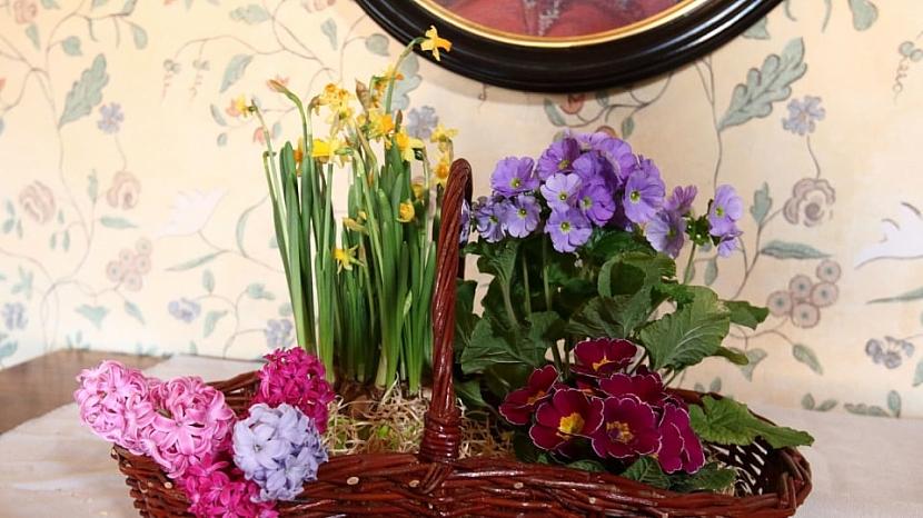 Jarní květinový košík