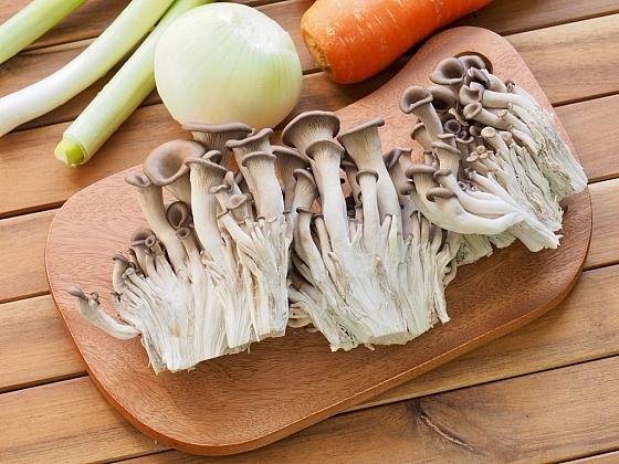 Jak si vypěstovat v domácích podmínkách jedlé houby?
