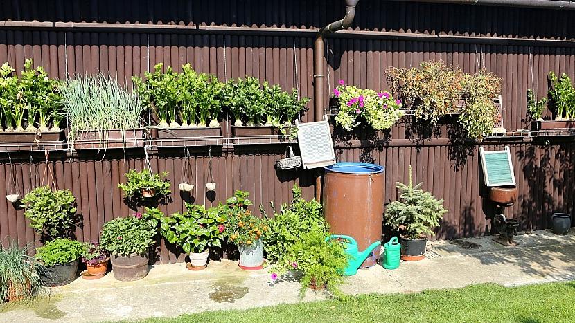 Pěstování zeleniny v truhlíku: truhlíky jsou na speciálně vyrobených zpevněných závěsech
