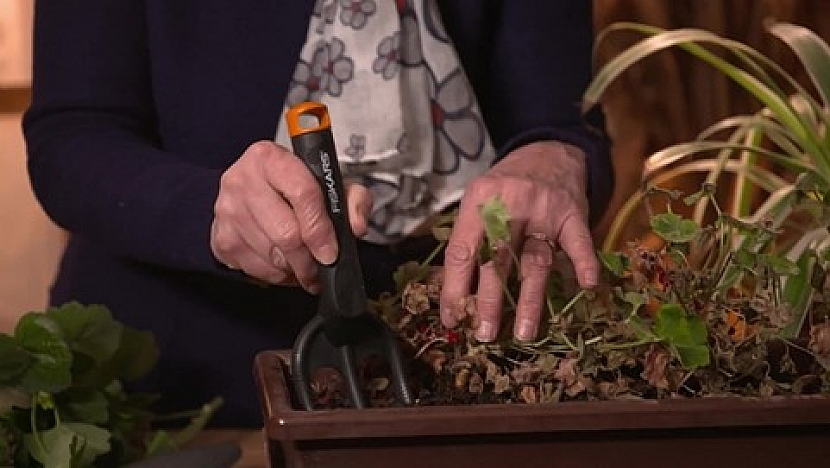 Ruce zahradnice