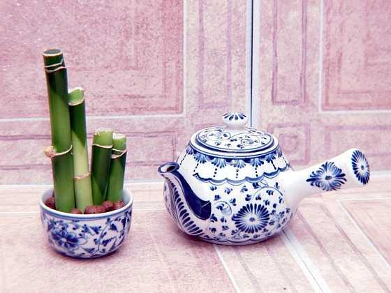 Pokojové květiny v atypických nádobách