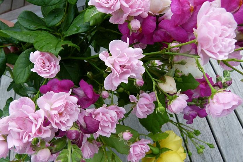 Kytička pro paní učitelku: Růže, hledíky i kopretiny… 3