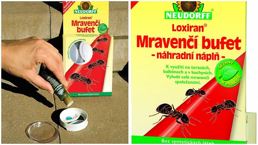 Loxiran Mravenčí bufet obsahuje návnadu s účinnou látkou spinosad; náhradní náplně lze dokoupit