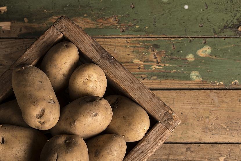 Pečlivě hlídejte uskladněné brambory