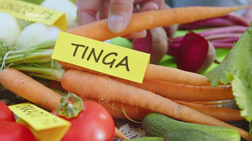 Mrkev Tinga má výrazně sladkou chuť