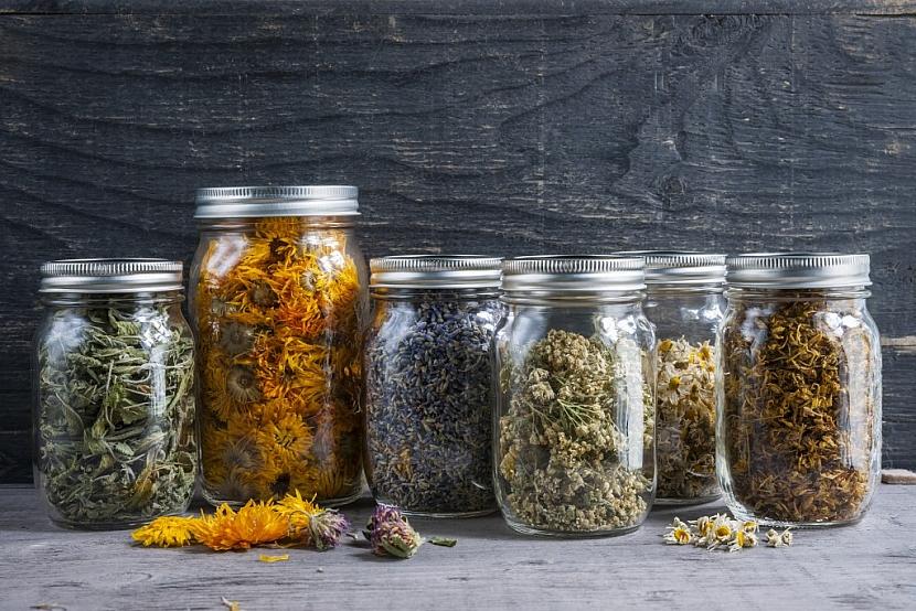 Jak tedy s jarními bylinkami zacházet, aby si uchovaly aroma a léčivé účinky?