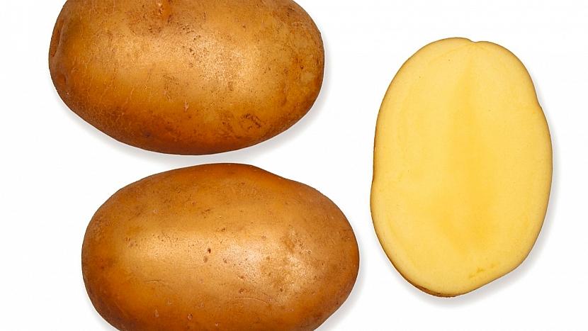 Brambory: raná odrůda ALICE