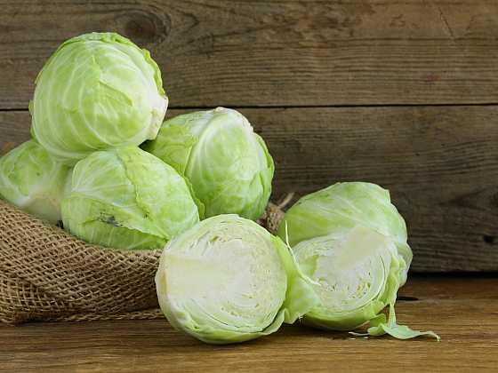 Zelí je významné vysokým obsahem vitamínu C, B1, provitamínu A a minerálních látek (Zdroj: Depositphotos)