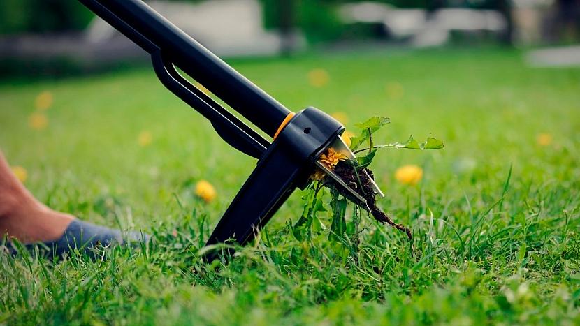 Jarní péče o trávník: vezměte si na pomoc vytrhávač plevele Xact™