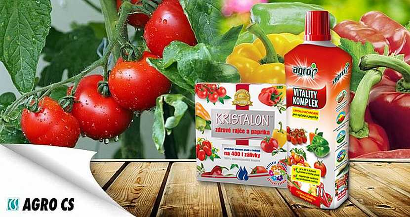 hnojivo pro rajčata