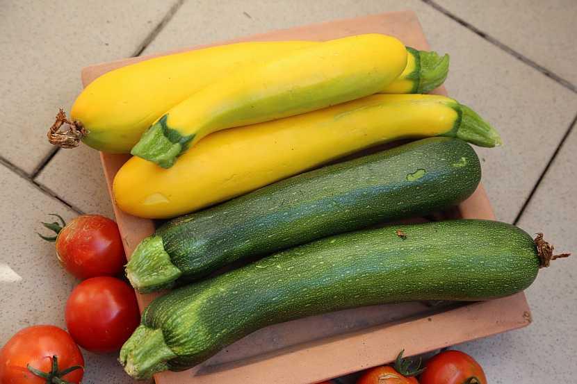 Zelené a žluté cukety