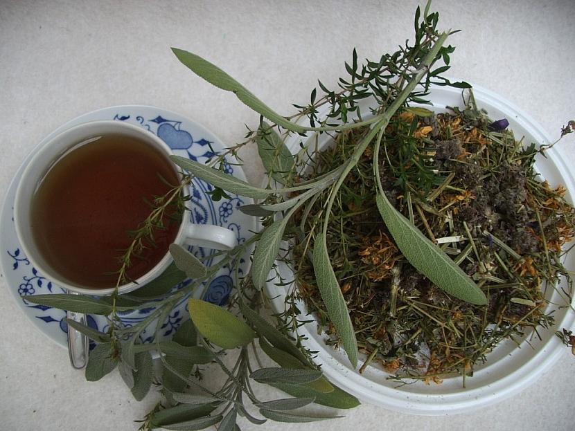 Z bylinek lze připravit výborné léčivé čaje