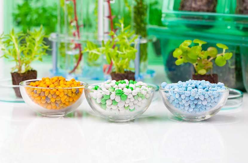 Různá hnojiva