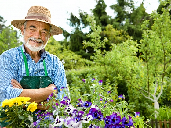 Práci na zahradě zvládnou i senioři, aniž by se museli namáhat (Zdroj: Depositphotos)