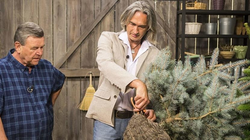 Výsadba dřevin má svá pravidla aneb Co vysazovat na podzim a co na jaře 2